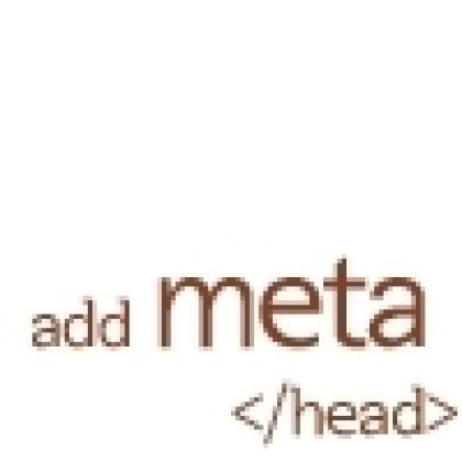 Meta Tag 입력기
