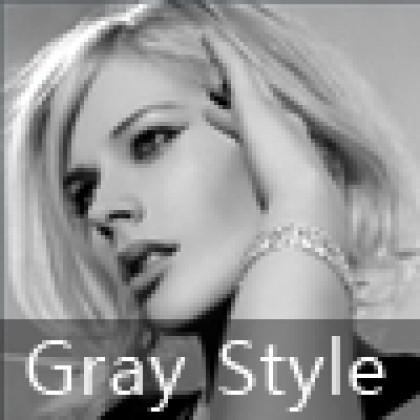 Gray Style 로그인 위젯